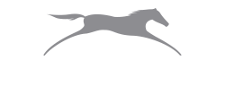 equine coaches logo