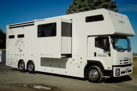 platinum d series 4 horse white 3